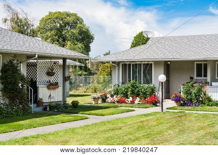 Neighbourhood of small residential houses with concrete pathway over front yard and blossoming flowers at the entrance