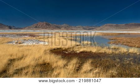 Autumn in the high mountains landscape: yellow wild grass in the middle of the mountain valley, small puddles with blue water, Himalayas.
