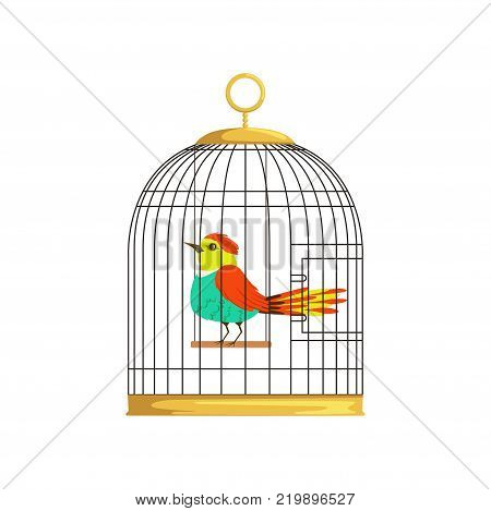 Beautiful character of colorful bird in cage. Wonderful feathered creature in hanging cell. Graphic design for pet store, poster or flyer. Cartoon vector illustration in flat style isolated on white.