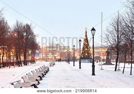 Alley at winter evening in microdistrict Rybatskoe on the outskirts of St. Petersburg Russia.