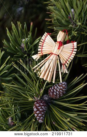 Straw angel in a christmas tree. Christmas decorations from straw - christmas angel.