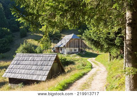Traditional old wooden hut cabin in mountain alps at rural landscape in slovenian Julian Alps, Slovenia.