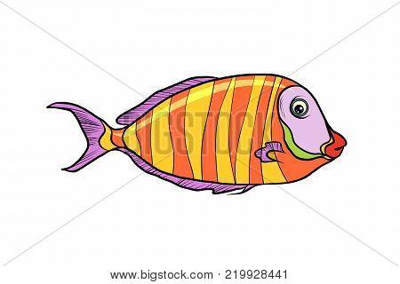 cichlid aquarium fish. Isolated on white background. Pop art retro vector illustration