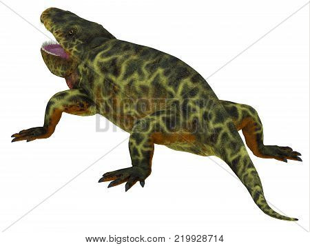 Eryops Dinosaur Tail 3D illustration - Eryops was an semi-aquatic ambush predator much like the modern crocodile and lived in Texas, New Mexico and the Eastern USA in the Permian Period. poster