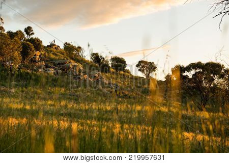 A lone figure stands on an escarpment at sunset in the town of York,