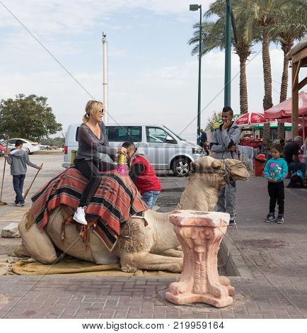 Yeriho, Israel, November 25, 2017 : The camel driver helps the visitor to descend from the camel in Yeriho in Israel