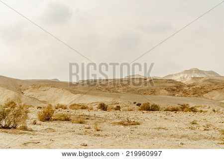 Landscape scenic view on wild nature rocks and sand in dry desert in Israel. Hot middle east wilderness. Scenic outdoor view on dirt land. Summer heat and sunlight, nobody on photo