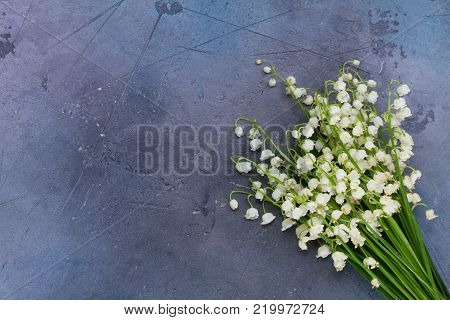 Lilly of the valley flowers on gray background with copy space