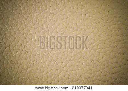 Texture of artificial leather. Beige background with vignette or a backdrop of leatherette.