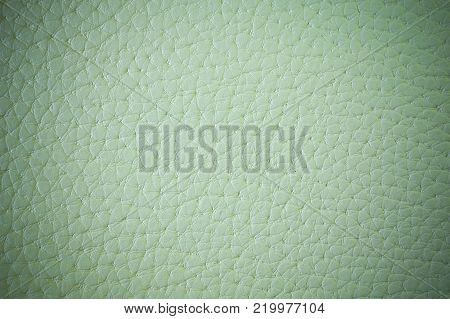 exture of artificial leather. Green background or backdrop of leatherette with vignette.