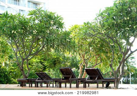 Outdoor wooden daybed under the tree in the public park