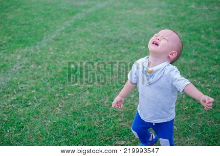 Cute little Asian 1 year old toddler baby boy child unhappy and crying in the park, Angry little boys with sad expressions, screaming and crying, concept of depression and sadness / Soft focus