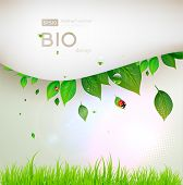bio concept design eco friendly for summer floral banner poster