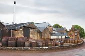 Whisky barrels full of whiskey in Scottish traditional distillery Dalmore. Wooden casks of whisky stocked outside. Dalmore, Scotland's oldest smallest producers of single malt whisky.Scotland, UK poster