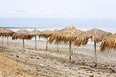 Tropical parasols at Maleme beach on Crete, Greece poster