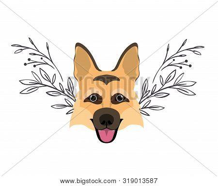 Head Of Cute Pastor Aleman Dog On White Background Vector Illustration Design