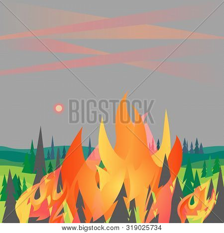 Forest Fires Disaster Mountain Trees Flat Vector. Wildfires Destroy Woodland Environment Cartoon. Fi