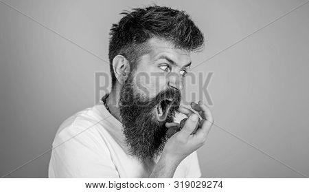 Do Not Touch My Berry. Hipster Bearded Holds Strawberries On Palm. Man Greedy Hungry Not Going To Sh