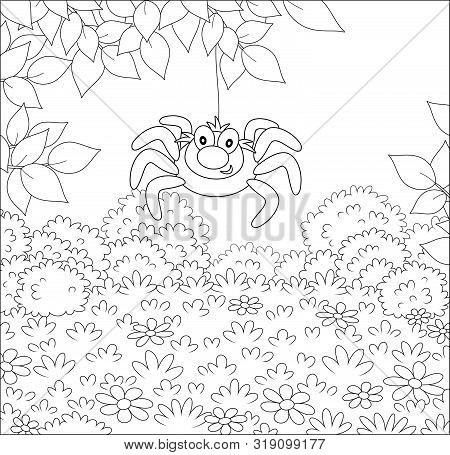Funny And Friendly Smiling Spider Hanging On A Tree Branch Over Grass Of A Glade In A Summer Forest,
