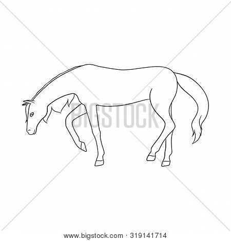 Isolated Object Of Running And Horse Sign. Collection Of Running And Hoofed Stock Vector Illustratio