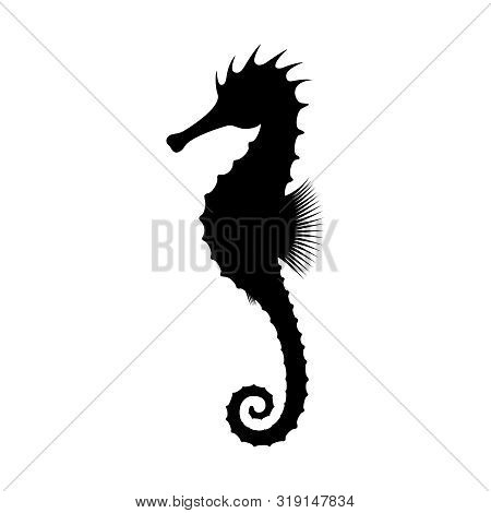 Seahorse Graphic Icon. Black Silhouette Seahorse Isolated On White Background. Seahorse High Detaile