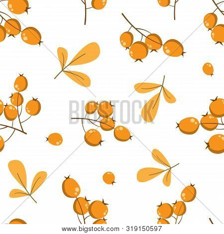 Vector Floral Seamless Pattern With Sea buckthorn And Leaves. Floral Design For Fabric, Wallpaper,