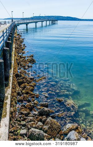 A Low Tide Uncovered Rocks At The Pier In Des Moines, Washington.