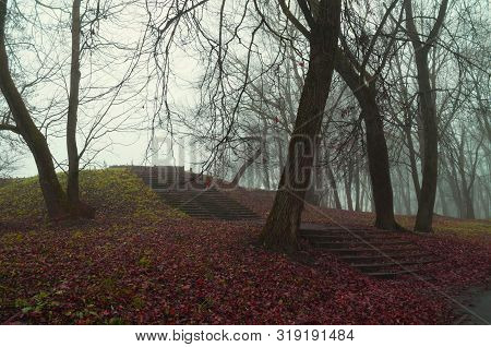 Fall foggy forest with old bare trees, ruined stone staircade and fallen red fall leaves on the ground. Colorful fall mysterious landscape in vintage tones. Soft filter applied