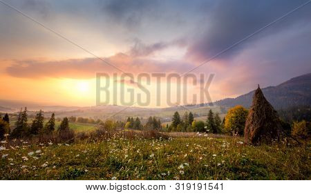 Beautiful morning in Mountains with white flowers and picturesque valley. Natural landscape, panoramic. Carpathians Mountains, Ukraine, Europe
