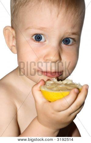 Beautiful Baby Boy Eat Lemon