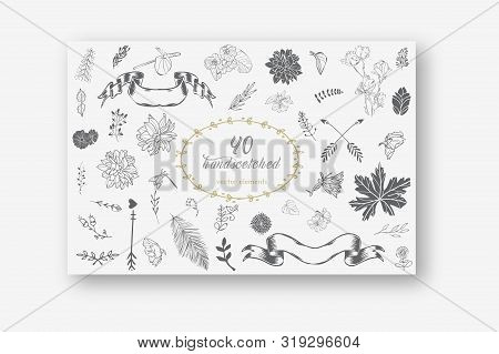 Collection Of Hand-sketched Elements - Florals, Calligraphic Elements, Arrows, Ampersands And Catchw