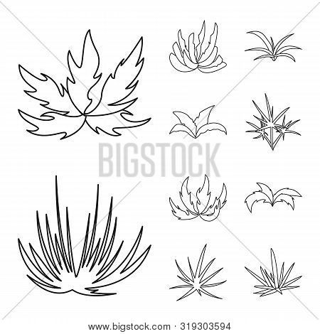 Isolated Object Of Hedge And Shrub Icon. Set Of Hedge And Floral Stock Symbol For Web.