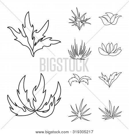 Isolated Object Of Hedge And Shrub Symbol. Set Of Hedge And Floral Vector Icon For Stock.