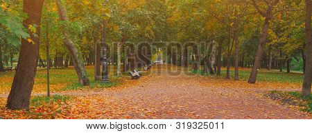 Autumn Park Alley Road In City Landscape. People Walking On Path In Autumn Park With Golden Leaves A