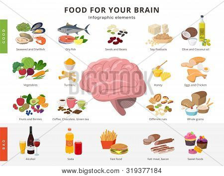 Healthy Food And Bad Food For Brains Infographic Elements In Detailed Flat Design Isolated On White