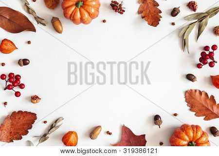 Autumn Composition. Dried Leaves, Pumpkins, Flowers, Rowan Berries On White Background. Autumn, Fall