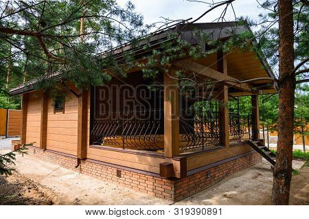 Small Wooden Cabin House Near Pine Forest. Exterior Design