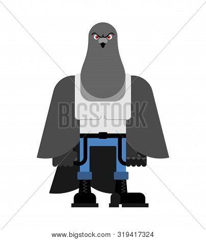 Bully Dove. Hooligan Pigeon. Hoodlum Bird. Vector Illustration