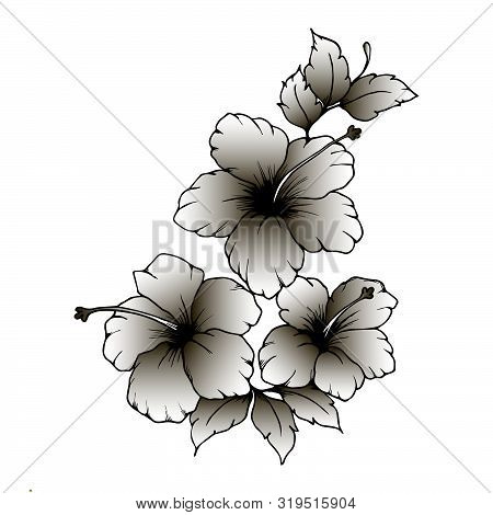 Hand Drawn Hibiscus Flowers. Hibiscus Flowers With Black And White Gradient On White Background. Hib