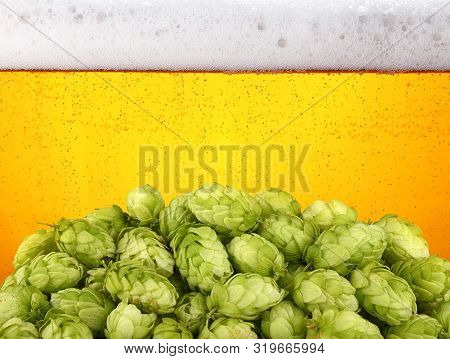 Close up heap of fresh green hops over background of lager beer with bubbles and froth in glass, low angle side view poster