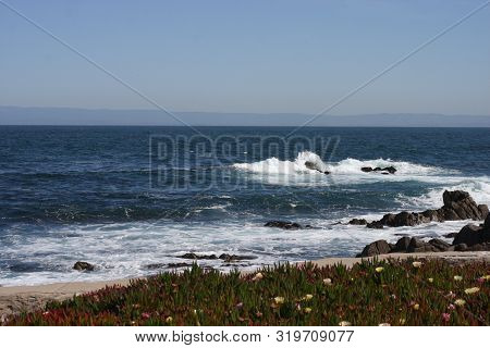 This Is An Image Of Ice Plant And Waives Along The Coast Of Pacific Grove, California.