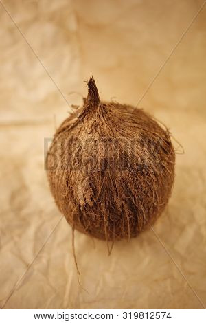 Coconut Drupe Palm Fruit On Old Paper Background