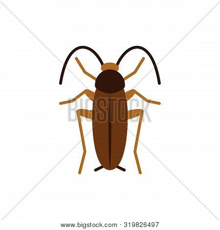 Cockroach Single Flat Icon. Roach Simple Sign In Cartoon Style. Pest Insect Pictogram. Wildlife Symb