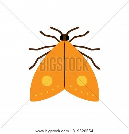 Moth Single Flat Icon. Butterfly Simple Sign In Cartoon Style. Insect Pictogram. Wildlife Symbol. En