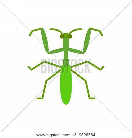 Mantis Single Flat Icon. Insect Simple Sign In Cartoon Style. Bug Pictogram Wildlife Symbol. Entomol