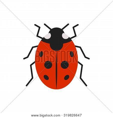 Ladybug Single Flat Icon. Ladybird Simple Sign In Cartoon Style. Bug Pictogram Symbol. Wildlife Inse