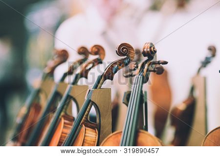 Details With The Scroll, Peg Box, Tuning Pegs, Strings, Neck And Fingerboard Of A Violin Before A Sy