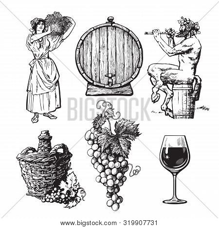 Set Of Hand Drawn Elements For Wine Design. Beautiful Peasant Woman Carrying Basket, Bunch Of Grapes