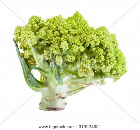 Side View Of Fresh Romanesco Broccoli Isolated On White Background