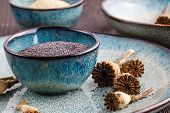 Poppy seeds and seedpods in ceramic bowl poster